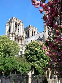 A different view of the Notre Dame Paris