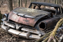 A  Dodge Coronet in a Southwestern Ontario woodlot
