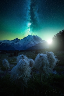 A dreamy composite from Mt Rainier National Park