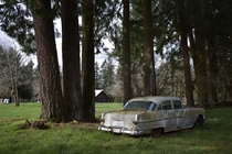 A few years ago I stumbled across this classic Pontiac rusting away in the forests of Oregon