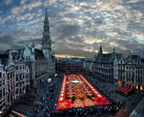 A flower carpet in Brussels  photo by Gaston Batistini