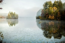 A foggy fall morning over a quiet pond Vermont USA madisonannestudio