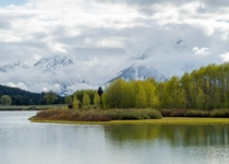 A foggy morning at Oxbow Bend Grand Teton National Park Wyoming