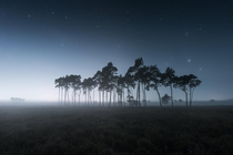 A foggy night in the Belgian savannah
