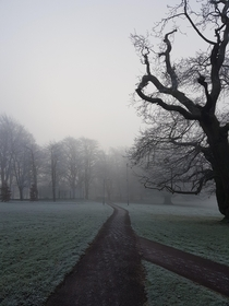 A foggy winter morning Taken a few weeks ago in Nottingham
