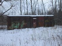 A Forgotten Railroad Car Quietly Nestled in a Forest as the Ages Pass Ontario Canada  OC