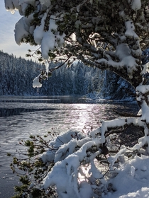 A frosty lake near Sooke BC   x