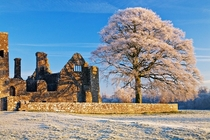 A frosty slightly snowy Bective Abbey County Meath Ireland