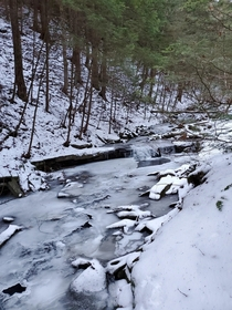 A frozen creek near Windsor NY