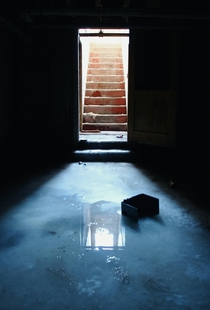 A Frozen Flooded Basement in Colorado