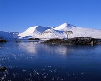 A frozen Loch na h-Achlaise Scotland - shot on Mamiya RB amp Velvia