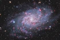 A Galaxy full of nebulous gems The Triangulum galaxy captured by amateur ground based equipment