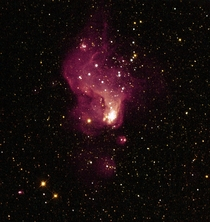 A Giant Star Factory in Neighboring Galaxy NGC   NASA