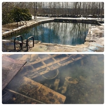A glimpse inside the abandoned pool I posted yesterday