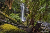 A glimpse of the beautiful Russell Falls in the Mt Field National Park in Tasmania Australia