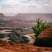 A glimpse of the Green River winding through Canyonlands National Park