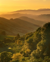 A glorious morning in the hills of San Franciscos East Bay near Orinda CA