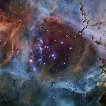 A gorgeous picture showing an open cluster of stars in the heart of the Rosette Nebula