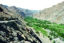 A green valley among the barren hills of Ladakh India -
