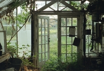 A greenhouse slowly being absorbed by nature