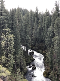 A happy memory and a beautiful view McCloud Falls CA