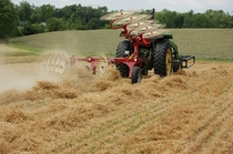 A Hay Rake in Action