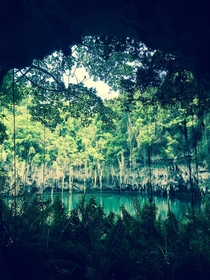 A hidden Lake at the mouth of a cave Los Tres Ojos in the Dominican Republic