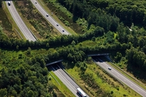 A Highway Ecoduct The Veluwe Netherlands