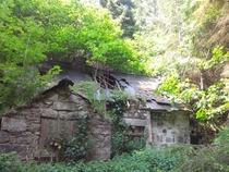 A House Engulfed by Ravensdale Forest Ireland