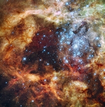 A Hubble Space Telescope image of the R super star cluster near the center of the  Doradus Nebula also known as the Tarantula Nebula or NGC