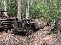 A Jeep used by archaeologists excavating Tikal in Guatemala s-s