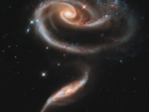 A large spiral galaxy known as UGC  with a disk that is distorted into a rose-like shape by the gravitational tidal pull of the galaxy below it UGC