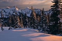 A late afternoon on the slopes of Mt Rainier Washington USA
