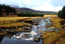 A little stream in Scotland near Loch Muick in Aberdeenshire November