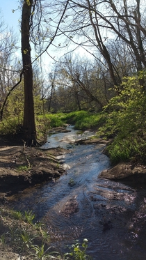 A little stream running into Burnetts Creek in Tippecanoe County IN
