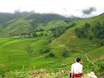 a local Hmong girl sits overlooking the rice fields of of Sapa in rural northern Vietnam  x   OC