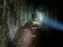 A look at Britains lost and abandoned Railway tunnels Viaducts and relics x OC