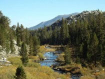 A lovely valley near Mammoth Lakes CA