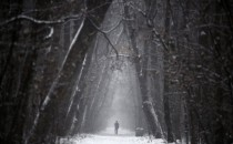 A man walks at a park during a snowfall in downtown Sofia Bulgaria