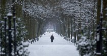 A man walks down a snow-covered path in a public park in Wilrijk Belgium