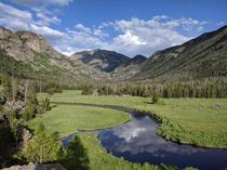 A meadow in Rocky Mountain National Park