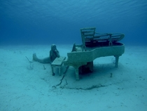 A mermaid wondering where this old piano came from