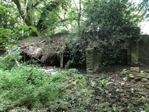 A milking shed in Somerset UK Left to nature after decades of use in the th and th century and has been left like this since the early s