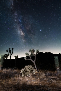 A Milky way composite I took in Joshua Tree this past summer