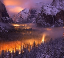 A mist had settled over Yosemite Valley as automobiles passed through headlights illuminated the fog by Phil Hawkins