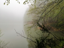 A misty lake in the Belgrade Forest Istanbul Turkey