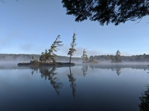 A misty morning in Algonquin Park Canada
