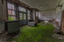 A mossy new carpet growing inside an abandoned TB Hospital OC -