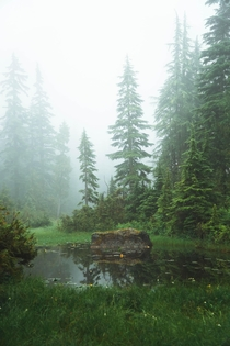 A mysterious pond Cyprus Mountain British Columbia