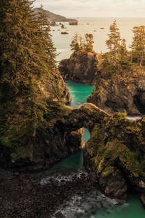 A Natural Bridge in Oregon OC x